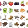 Red Wine Aromas - 24 aromas