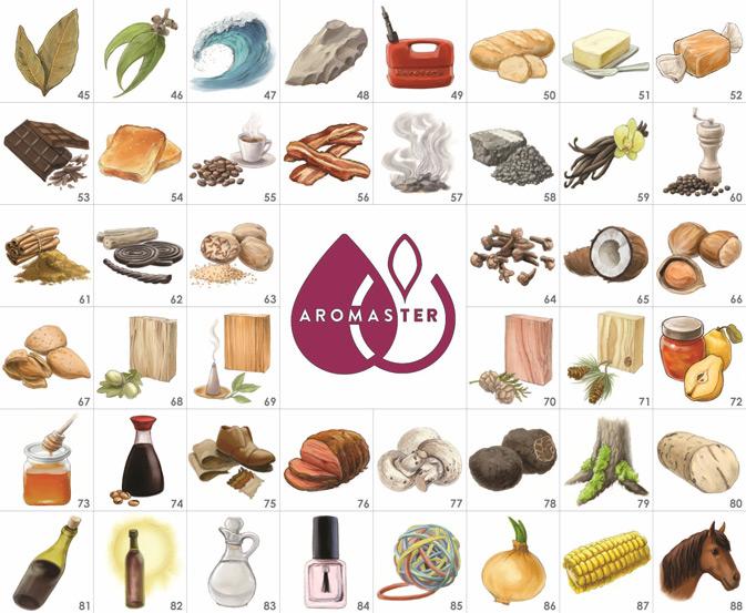 master wine aromas tasting kit  quot 88 quot  wine aromas oak tree vector logo oak tree vector art