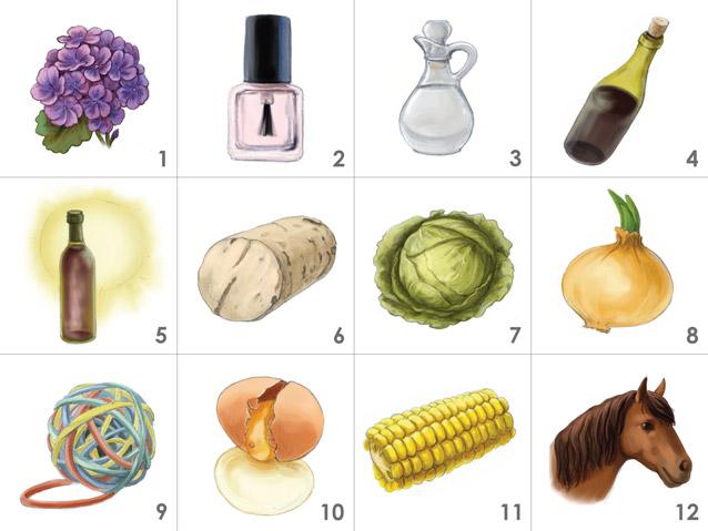 Wine Faults Aroma Kit 12 Or 24 Aromas