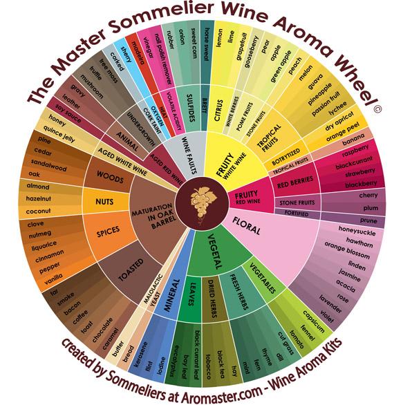 Wine-Aroma-Wheel---Master-Sommelier